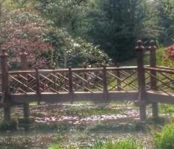 am bryngarw-country-park