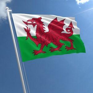wales flag std